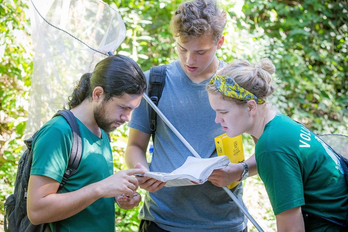 Volunteers conduct a butterfly survey as part of their Conservation volunteer work in Costa Rica